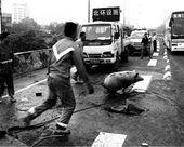 Bezład, reż. Huang Weikai